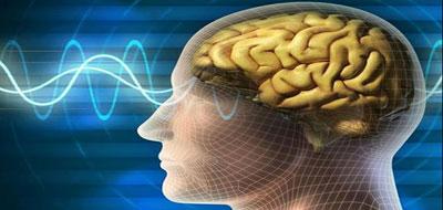 أوامر الدماغ البشري تنتقل عبر الإنترنت