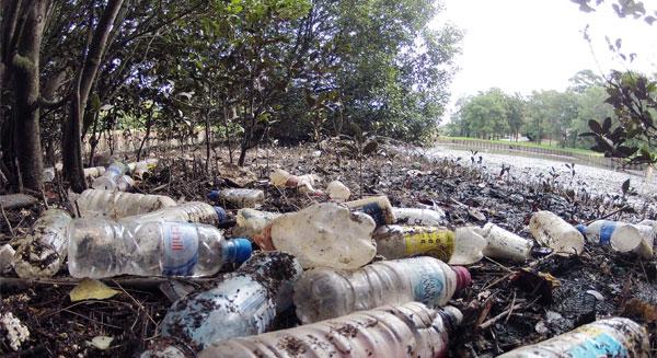 رمي المواد البلاستيكية.. يهدد البيئة