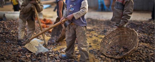 تراجع عدد الأطفال العاملين في العالم