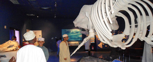 متحف التاريخ الطبيعي بسلطنة عمان