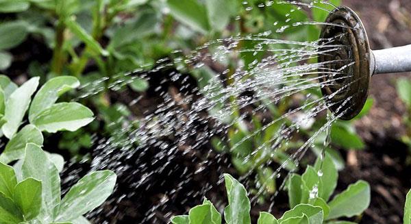 أجهزة استشعار توفر المياه