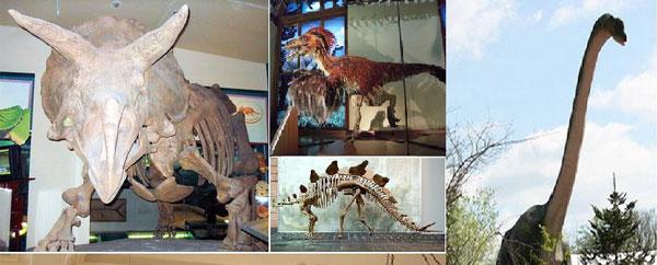 اكتشاف أضخم ديناصور عاش في أوروبا أثناء العصر الجوارسي