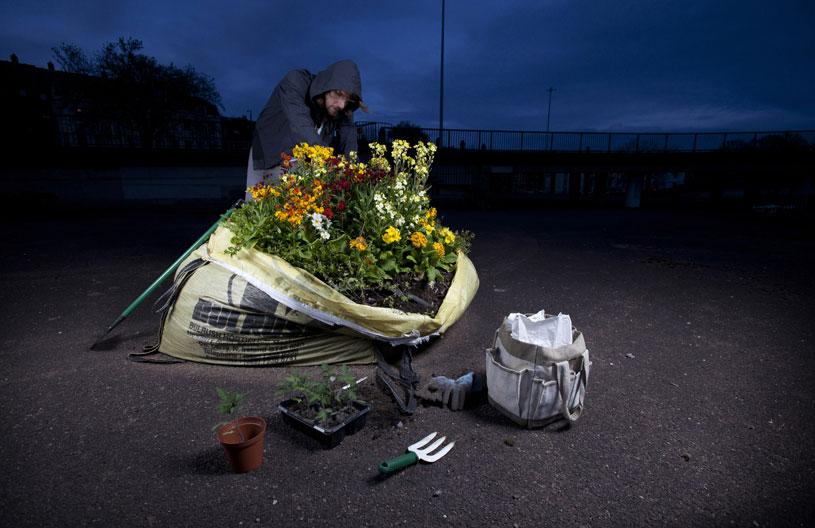 الأعمال الفائزة في المسابقة الدولية لصور الحدائق