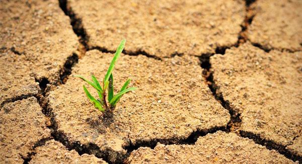 التغيرات المناخية تهدد حياة البشر