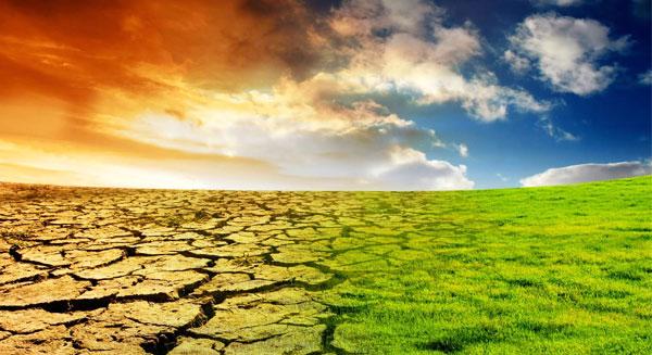 دور الغازات الدفيئة
