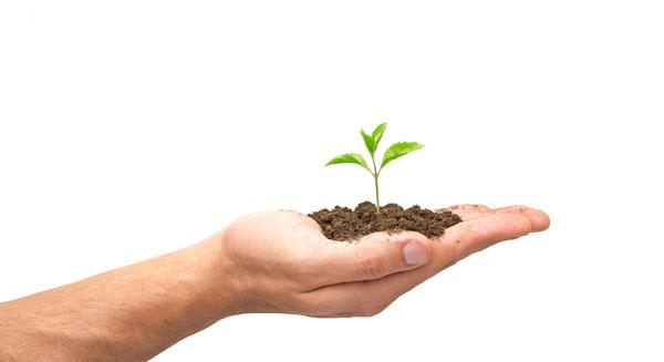 أهداف التربية البيئية
