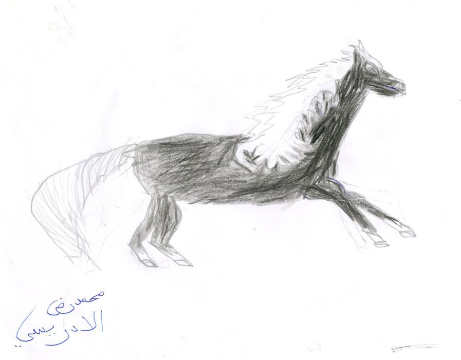 شجاعة الحصان