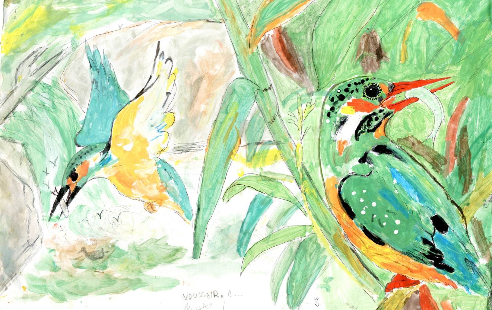 الطيور الجميلة