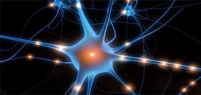 الخلية العصبية