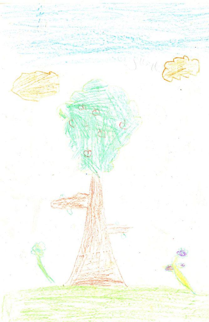 شجرة مدرستي