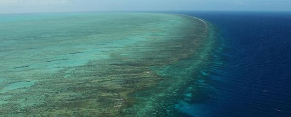 نصف التراث العالمي الطبيعي.. مهدد