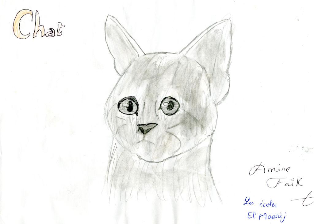 قطتي الوديعة