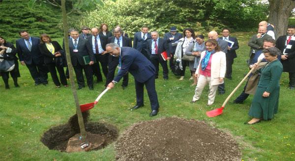 غرس شجرة احتفاء بالتوقيع على اتفاق باريس حول تغيرات المناخ