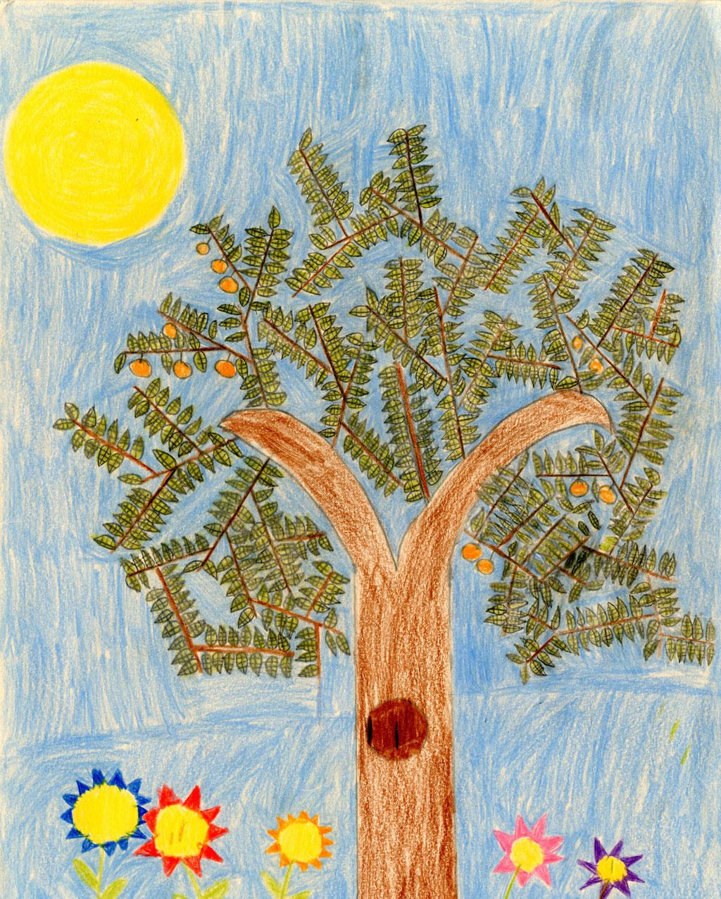الشجرة العجيبة