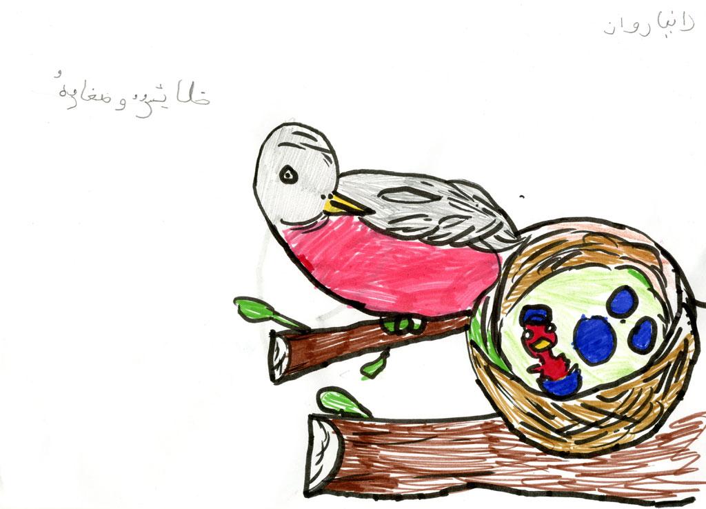 طائر وصغاره