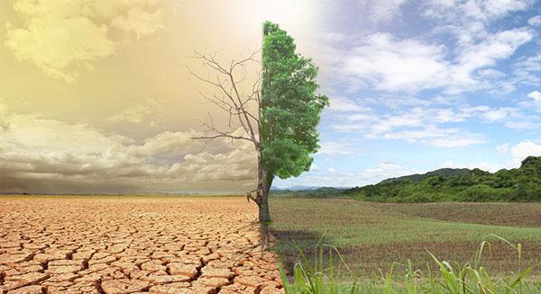 أثر التغيرات المناخية على الزراعة حول العالم
